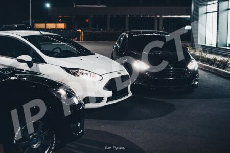 Ford Fiesta Family